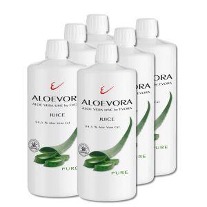 ALOEVORA Juice -pure- SIX PACK 99,5% Aloe Vera